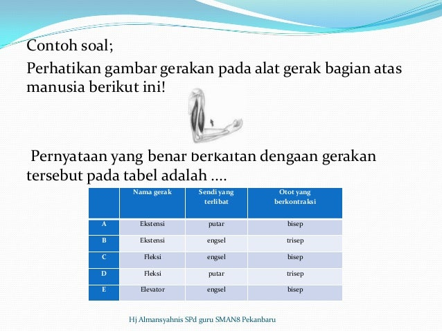 Bedah SKL Biologi SMA TP 2012 2013
