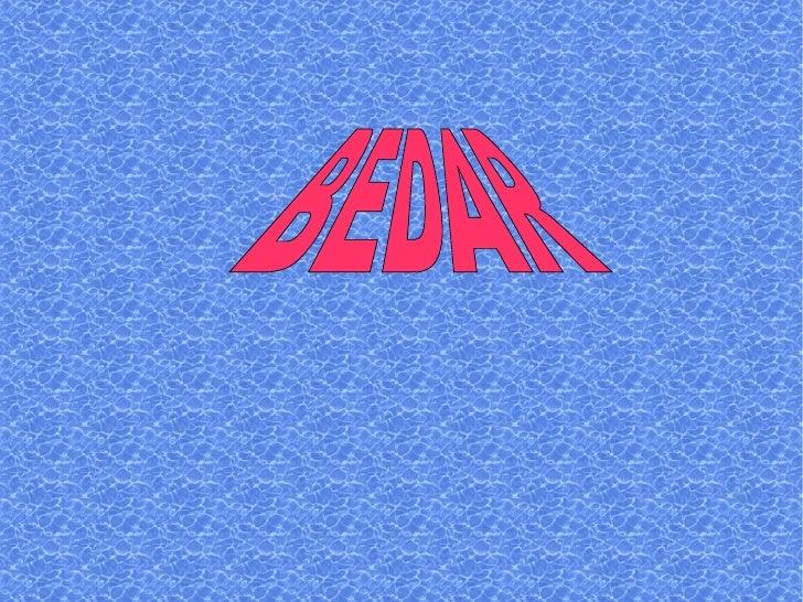 BEDAR