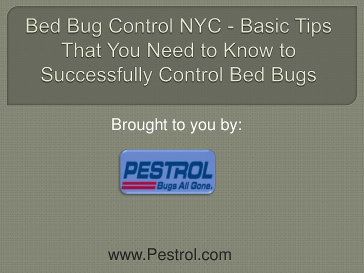 Bed Bug Control NYC - Basic Tips That You Need to Know to Successfully Control Bed Bugs<br />Brought to you by:<br />www.P...