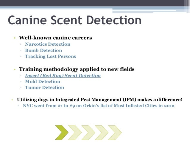 Bed Bug Scent Detection Dogs