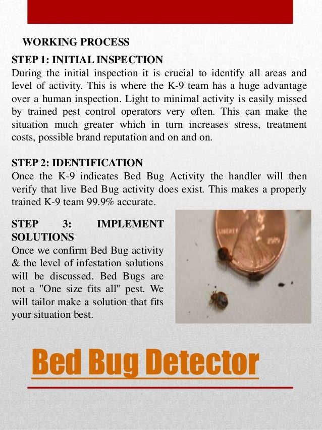 bug bed traps detector youtube watch