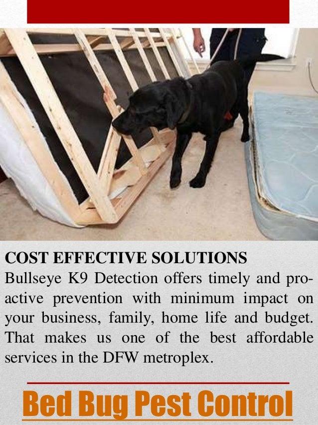 Bed Bug Exterminator Dallas Cost
