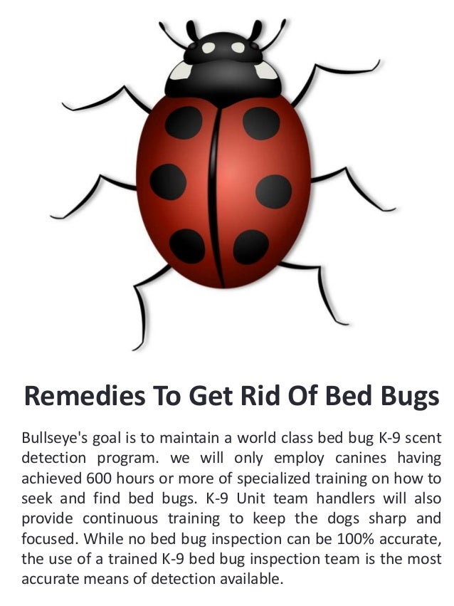 Bed Bug Exterminator for hire near my location Slide 2
