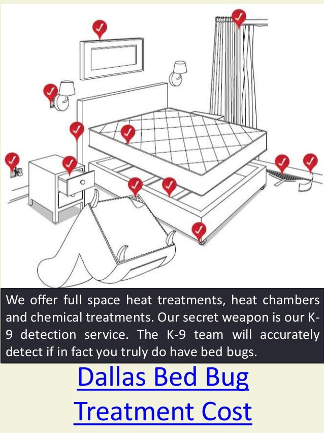 Bed Bug Exterminator for hire near my location Slide 3
