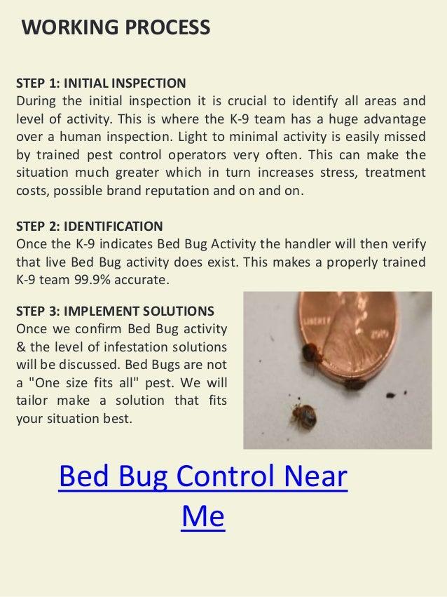 Bed Bug Control ...
