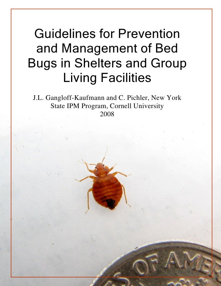 Guidelines for Prevention and Management of BedBugs in Shelters and Group      Living FacilitiesJ.L. Gangloff-Kaufmann and...