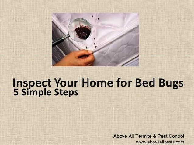 5 tips to determine if you have bed bugs new jersey pest
