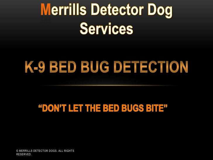 © MERRILLS DETECTOR DOGS. ALL RIGHTSRESERVED.