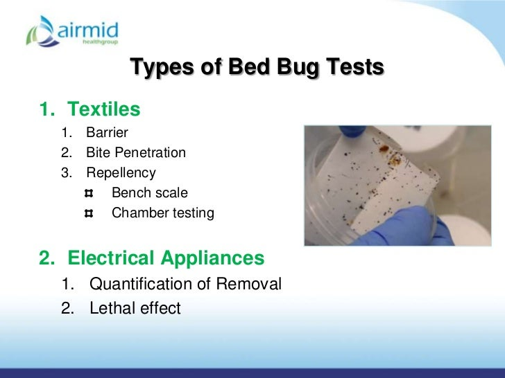 Types of Bed Bug. Bed bug presentation airmid healthgroup