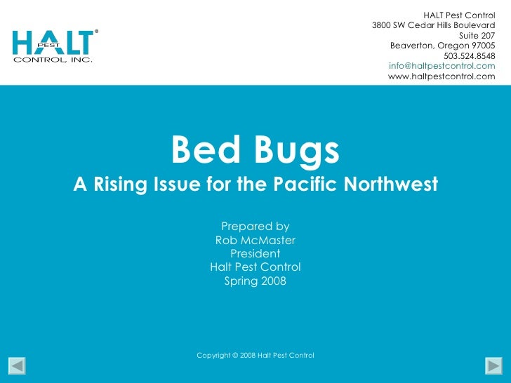 Bed Bugs A Rising Issue for the Pacific Northwest Prepared by Rob McMaster President Halt Pest Control Spring 2008 HALT Pe...