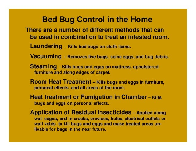 Bed Bugs Heat Treatment Cost