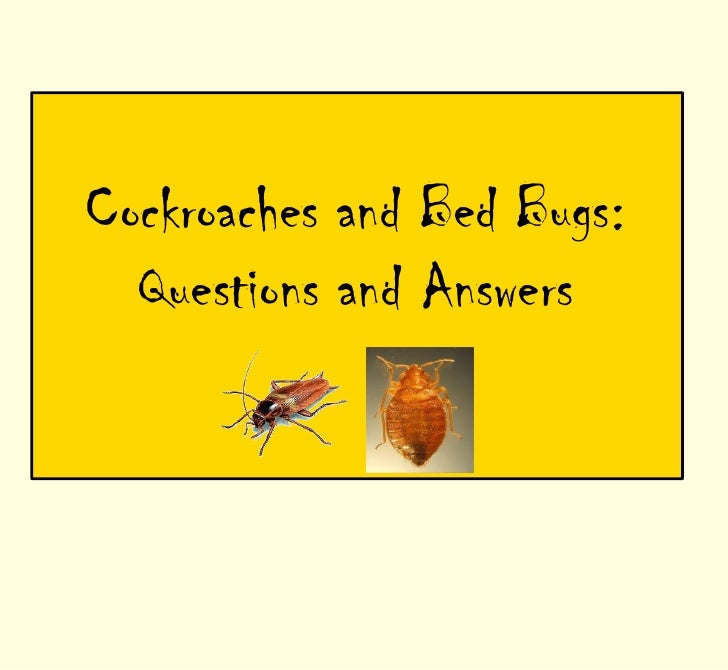 Cockroaches and Bed Bugs:  Questions and Answers