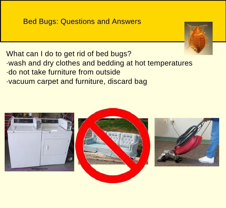 Will Washing And Drying My Clothes Kill Bed Bugs