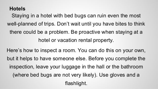 how to know if you have a bed bug infestation