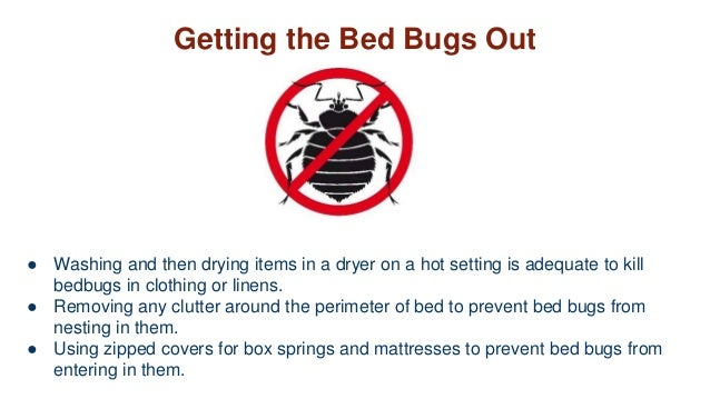 Washing Bed Bugs Out Of Clothes
