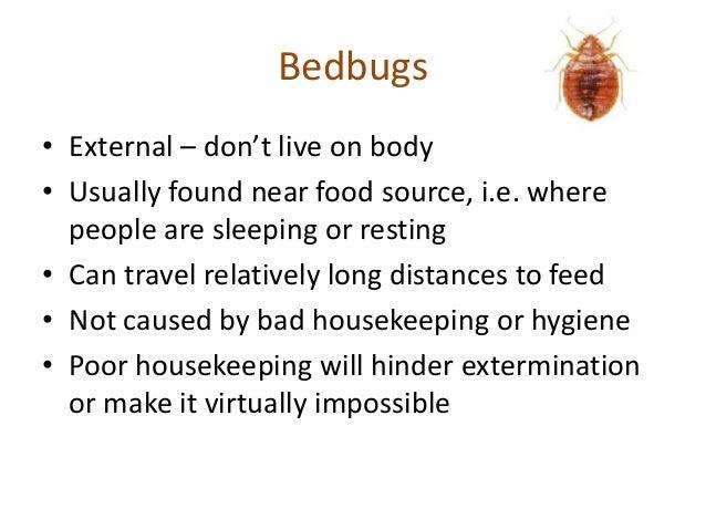 Bedbugs The Hidden Enemy