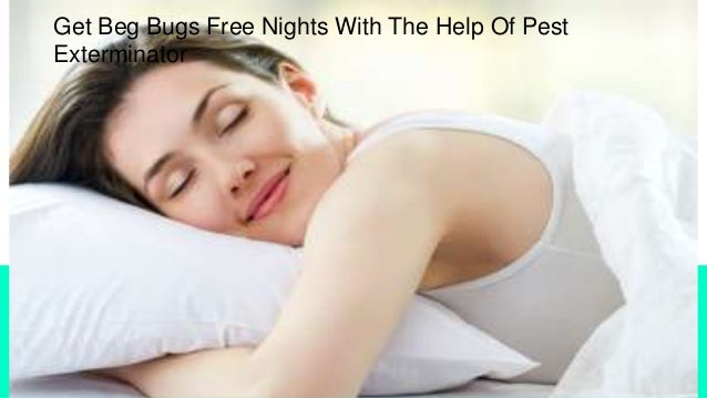Get Beg Bugs Free Nights With The Help Of Pest Exterminator