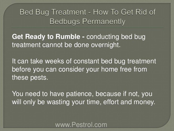 How Do You Get Rid Of Bed Bugs How To Get Rid Of Bed Bugs