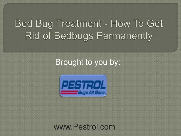 how to get rid of bedbugs on clothing