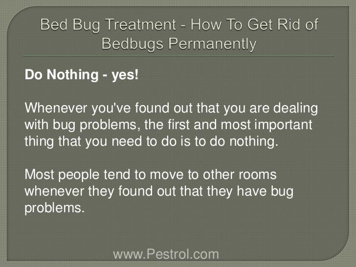Bed Bug Treatment Nyc How To Get Rid Of Bedbugs Permanently