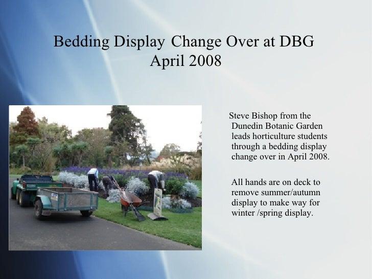 Bedding Display   Change Over at DBG  April 2008 <ul><li>Steve Bishop from the Dunedin Botanic Garden leads horticulture s...