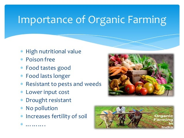 ppt on organic farming b plan