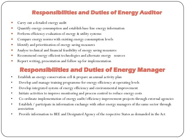 responsibilities and duties of energy auditor