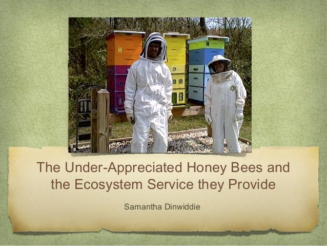 The Under-Appreciated Honey Bees andthe Ecosystem Service they ProvideSamantha Dinwiddie