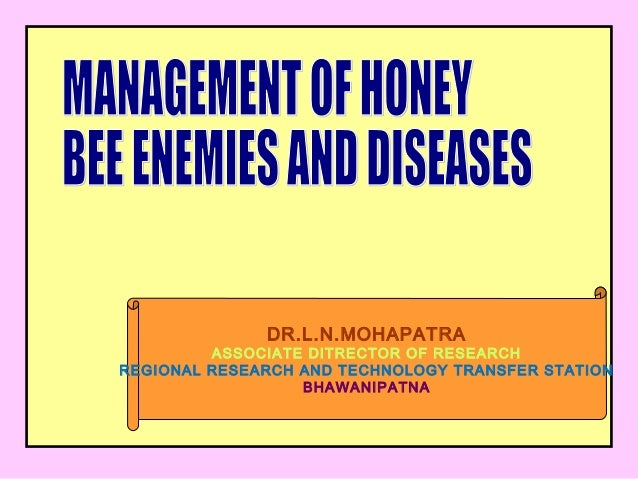 List of diseases of the honey bee - Wikipedia