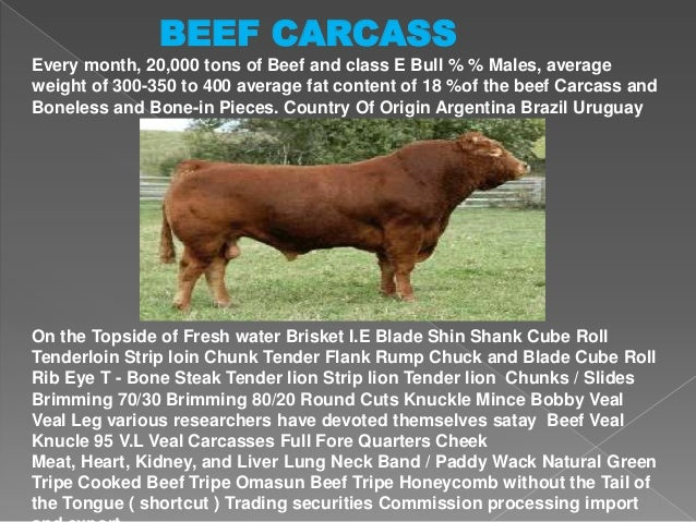 BEEF CARCASS Every month, 20,000 tons of Beef and class E Bull % % Males, average weight of 300-350 to 400 average fat con...