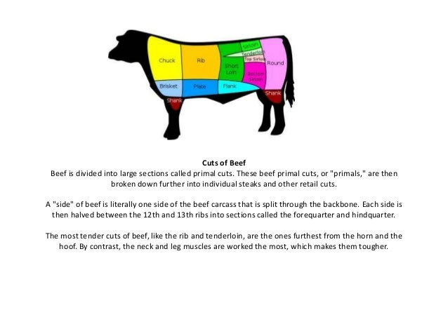"Cuts of Beef Beef is divided into large sections called primal cuts. These beef primal cuts, or ""primals,"" are then broken..."