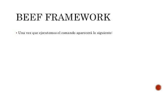 Beef framework 2016