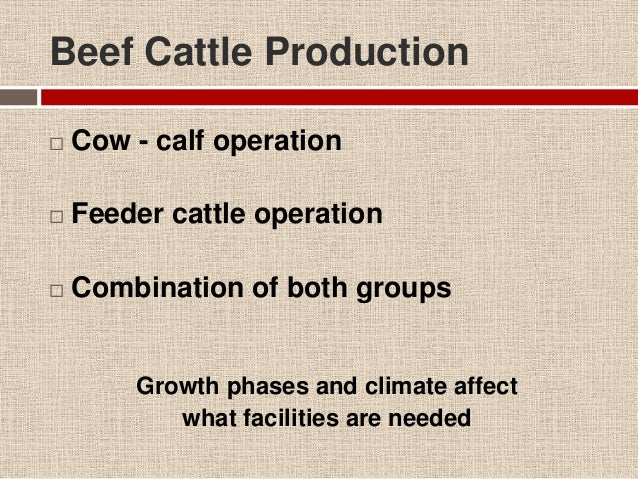 Beef Housing And Facilities