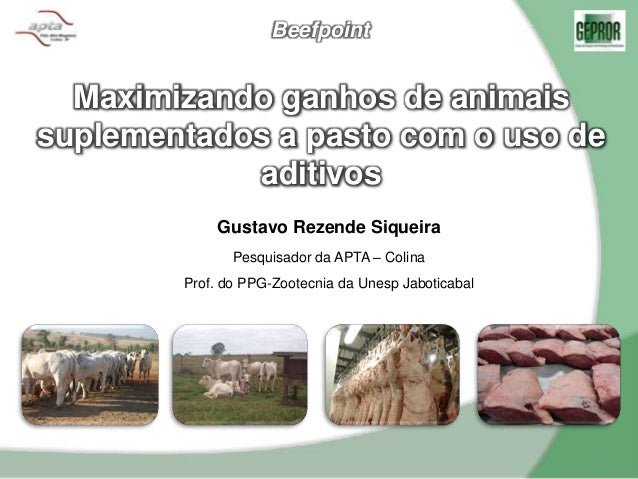 Maximizando ganhos de animais suplementados a pasto com o uso de aditivos 1 Beefpoint Gustavo Rezende Siqueira Pesquisador...