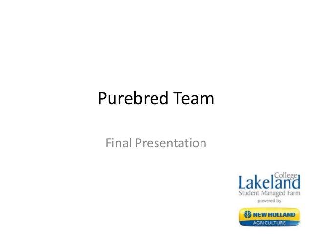 Purebred Team Final Presentation