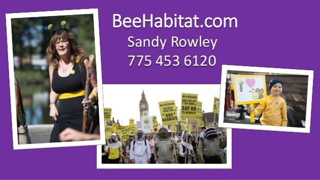 BeeHabitat.com Sandy Rowley 775 453 6120