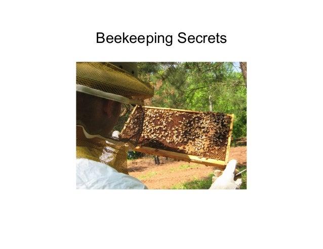 Beekeeping Secrets