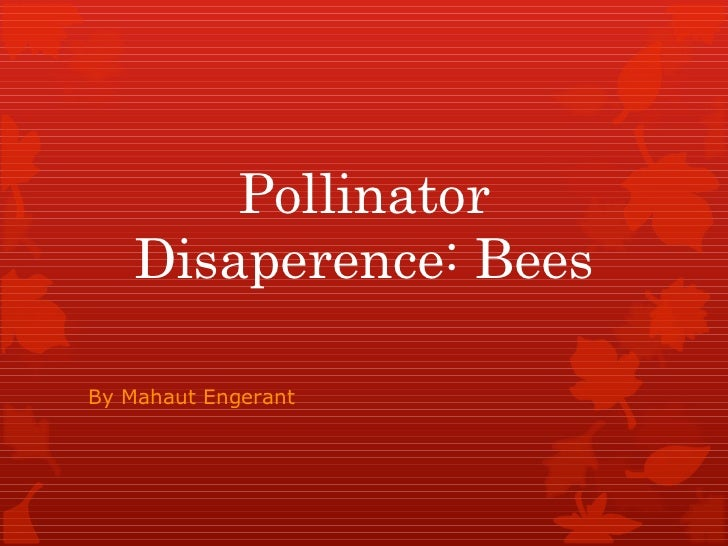 Pollinator Disaperence: Bees By Mahaut Engerant