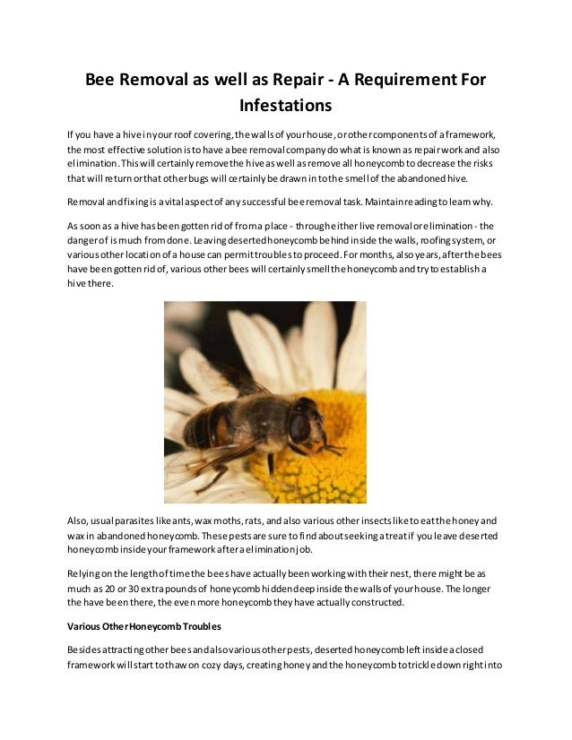 Bee removal as well as repair article