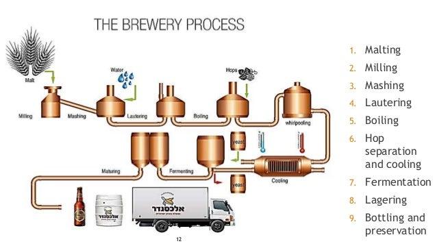 Brewing  |Beer Fermentation Process Diagram