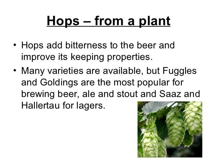 Hops – from a plant <ul><li>Hops add bitterness to the beer and improve its keeping properties.  </li></ul><ul><li>Many va...
