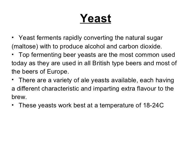 Yeast <ul><li>Yeast ferments rapidly converting the natural sugar </li></ul><ul><li>(maltose) with to produce alcohol and ...
