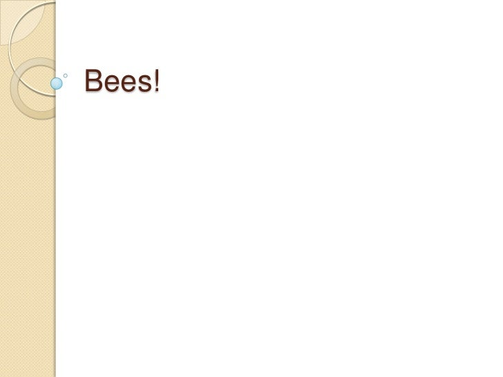Bees!<br />