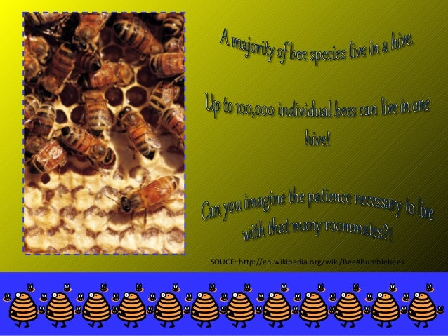 bees an example of a bad powerpoint presentation