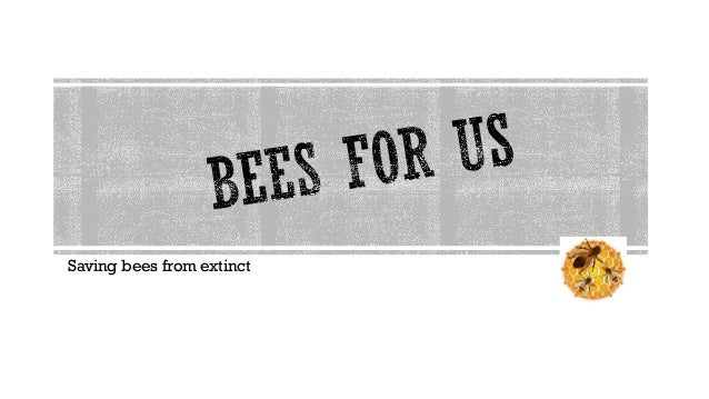 Saving bees from extinct
