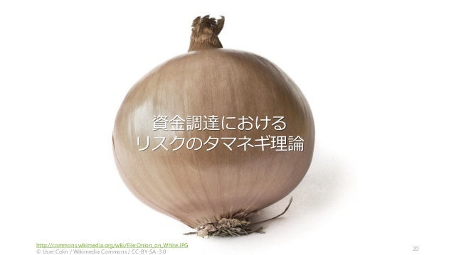 http://commons.wikimedia.org/wiki/File:Onion_on_White.JPG © User:Colin / Wikimedia Commons / CC-BY-SA-3.0 20 資金調達における リスクの...