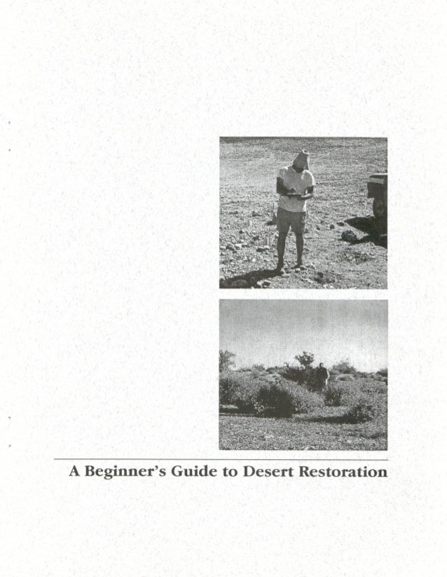 Beginner Guide to Desert Restoration