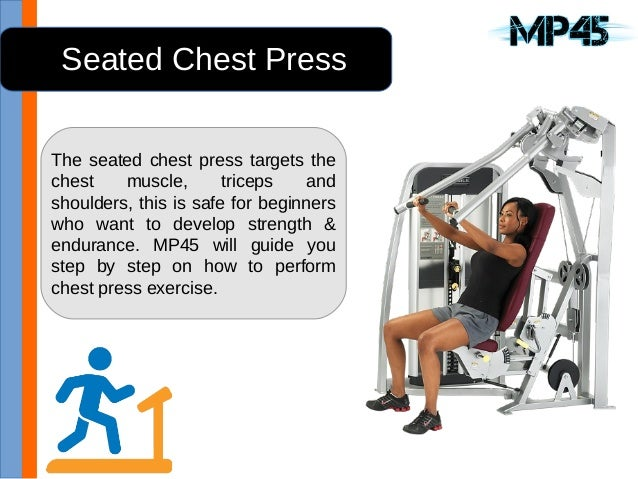 4 1 Seated Chest