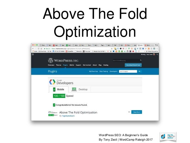 WordPress SEO: A Beginner's Guide By Tony Zeoli | WordCamp Raleigh 2017 Above The Fold Optimization