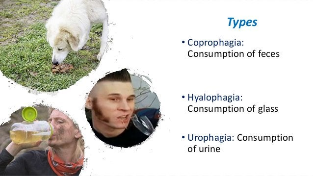 • Coprophagia: Consumption of feces • Hyalophagia: Consumption of glass • Urophagia: Consumption of urine Types